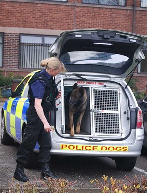 Baz Van Police Dog Barry